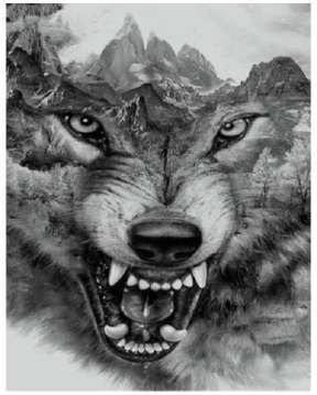 Diamond painting Wolf DL3040/101