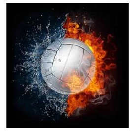Diamond painting Volleyball DL4040/119