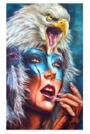 Diamond paint. Eagle op hoofd DL4050/102