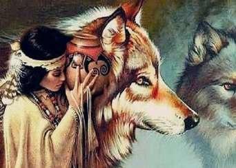 Diamond painting Wolf indiaan DL4050/103