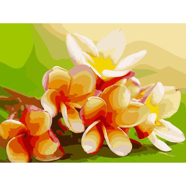 Schilderen op nummer bloem PNB5166