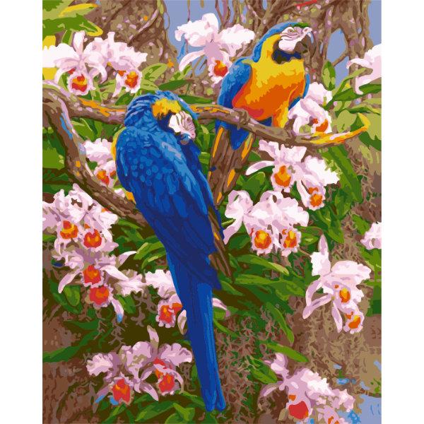 Schilderen op nummer vogels PBN5330
