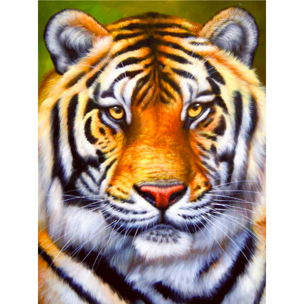 Schilderen op nummer tijger PBN5390